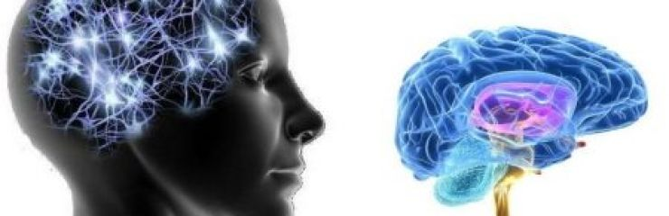 Что такое глиозные изменения в головном мозге?