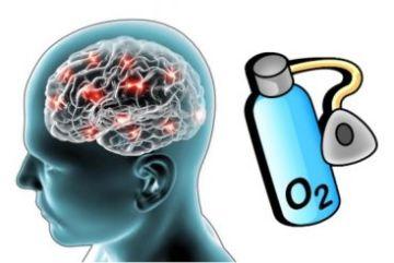 Что такое кислородное голодание мозга (гипоксия)?