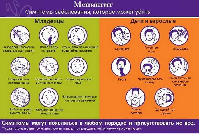 Как передается менингит от человека к человеку