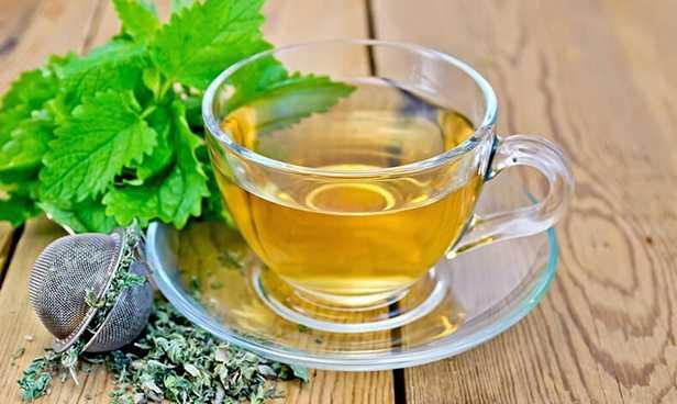 Чай из душицы если болит голова