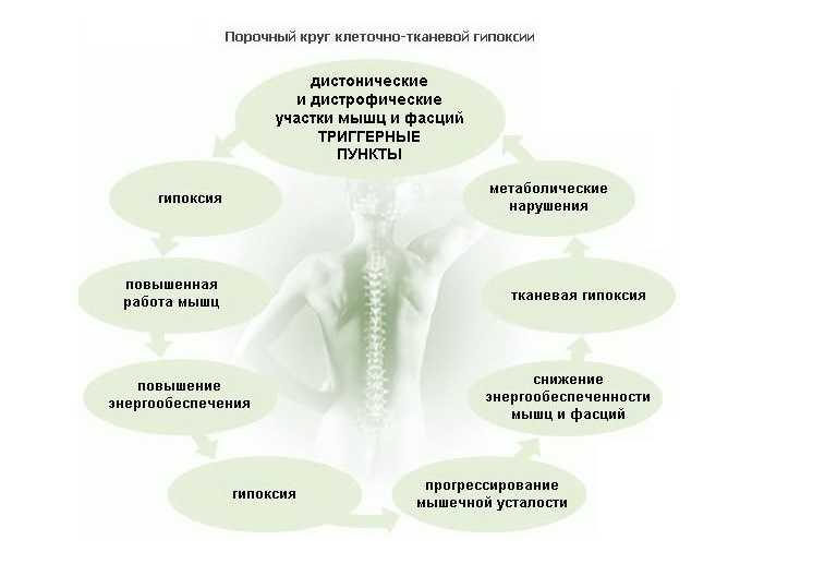 Круг клеточно-тканевой гипоксии