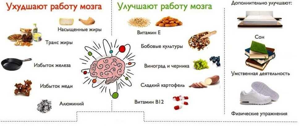 Продукты, улучшающие и ухудшающие работу мозга