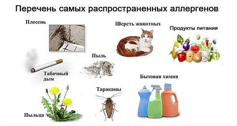 Перечень самых распространенных аллергенов