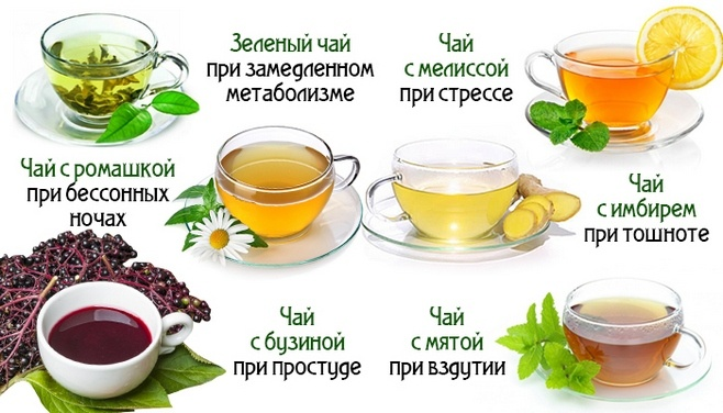 Разные виды чая и их польза