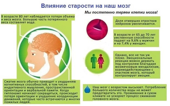 Как влияет старение на наш мозг