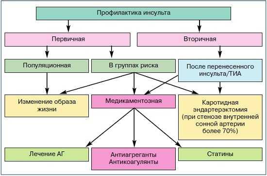 Первичная и вторичная профилактика инсульта