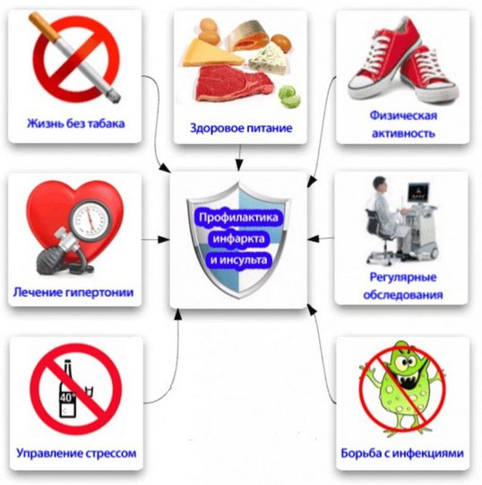 Профилактика инсульта и инфаркта