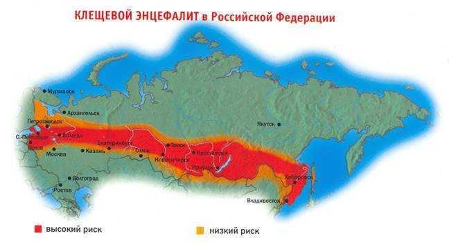 Распространение клещевого энцефалита в Российской Федерации